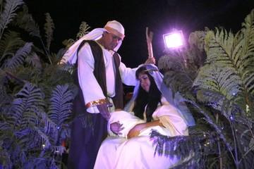 Municipios alegrarán en la noche del Desfile Navideño