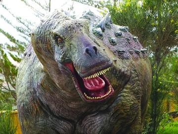 Cal Orck'o sorprende al mundo con tercera especie de dinosaurio