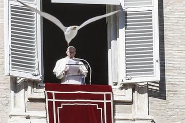 Papa Francisco alerta sobre la soledad y la división en el mundo