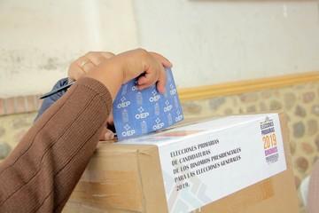 ¿Las elecciones primarias debieron ser obligatorias?