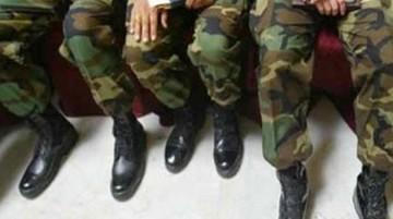 Soldados decapitan a dos gatos y dicen que fue por orden de un teniente