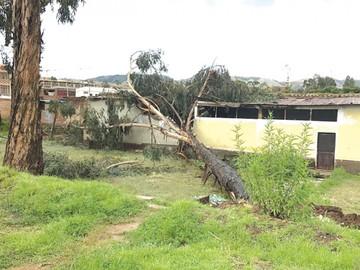 Chuquisaca: Lluvias dañan a 20 municipios y hay dos muertos