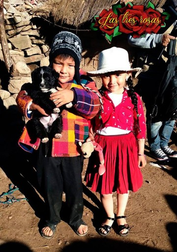 """""""Las Tres Rosas"""" rumbo a los VI Premios Platino"""