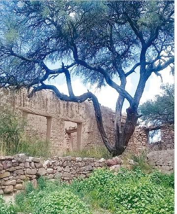 Potosí: Gobernación pretende recuperar casa de Medinaceli