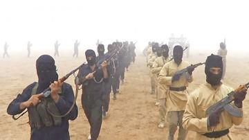 Militar de EEUU en Siria alerta que el EI resurgirá