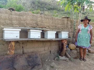 La respuesta al cambio climático  en el municipio de Villa Serrano
