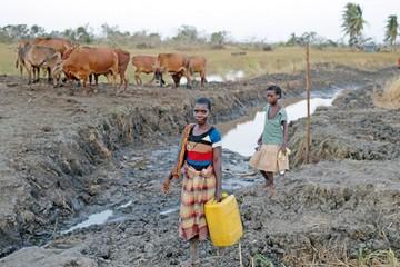 Países afectados por ciclón sufren amenaza del cólera