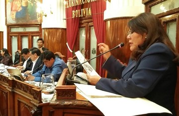 Interpelan al ministro de Obras Públicas por el manejo de la aerolínea BoA