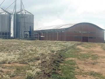 Mojocoya: Molino de trigo comenzará a producir en mayo