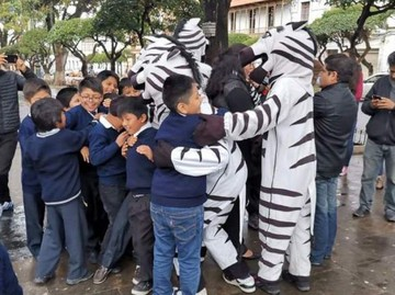 Alcaldía no firmará convenio para la continuidad del proyecto Cebras en Sucre