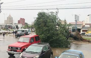Torrenciales lluvias causan destrozos en  Santa Cruz y Tarija