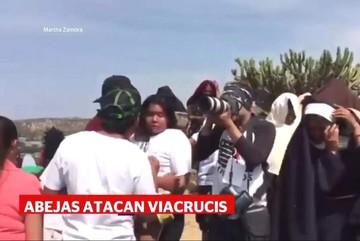 Enjambre de abejas ataca a feligreses durante viacrucis en sur de México