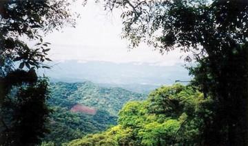 Sánchez: La deforestación ya afecta a zona de Tariquía