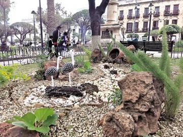 Plaza 25 de Mayo cambia el estilo de sus jardineras