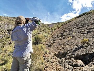 ¿Sitios paleontológicos gozan de protección?