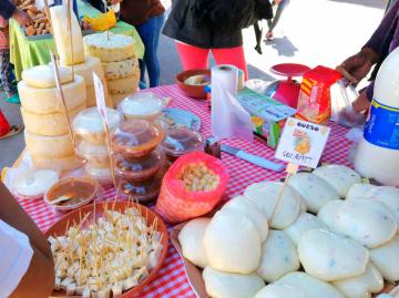 Cintis buscan mercado de Sucre
