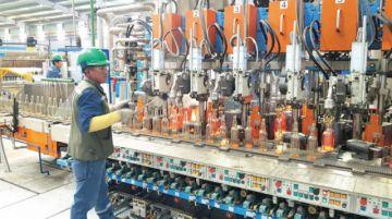 Envibol busca acuerdos para asegurar mercado