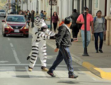 Alcalde anuncia retorno  de las Cebras este lunes