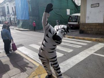 Las Cebras vuelven a las calles, ahora con el compromiso de la Alcaldía