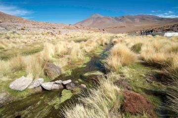 CIJ amplía plazo a Chile en proceso por el Silala