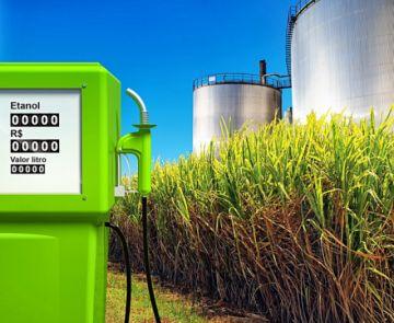 Biocombustibles, ¿buenos o malos para el medioambiente?