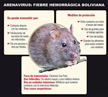 Identifican virus desconocido  y atención se vuelca a Caranavi