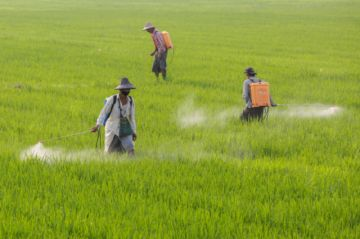 El futuro de la agricultura