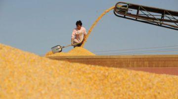Una mayor productividad bajará precios de los alimentos