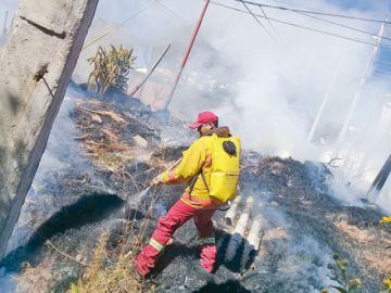 Este 2019 apagaron más de 60 incendios forestales