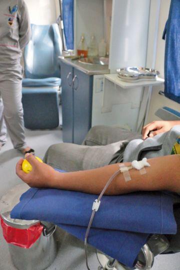 Ya pueden donar sangre bisexuales  y homosexuales