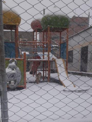 Suspenden clases hasta el lunes en Chuquisaca