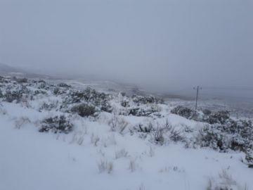 Defensa Civil y FFAA están en alerta ante nevadas