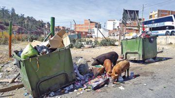 Zona Cobolde sufre abandono  y ausencia de representación