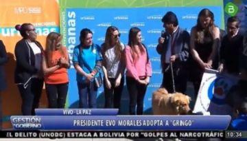 Evo adopta un perro rescatado del deslizamiento de LLojeta