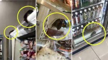 Cierran tienda tras hacerse viral un video con ratas en la comida