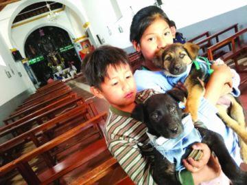 Celebran a los perros con crítica al maltrato