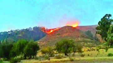 El fuego consume vegetación en Vila Vila