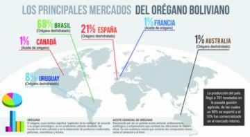 Bolivia alcanza producción histórica de 701 toneladas de orégano