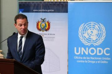 Unodc: Bolivia redujo en un 6% sus cultivos de coca