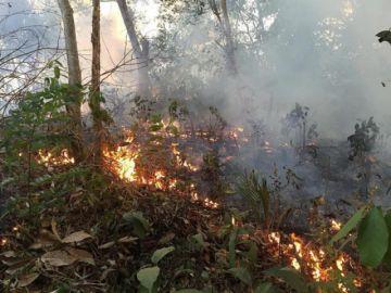 """Indígenas del Amazonas declaran """"no gratos"""" a Morales y Bolsonaro"""