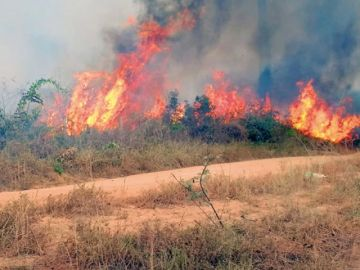 Clamor internacional por las llamas en la Amazonía