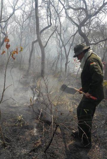 Organizaciones condenan decreto que amplía quemas en bosque