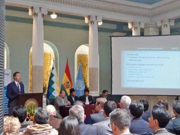 ONU: Cultivos de coca en el país se redujeron en 6% durante 2018