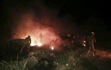 """El Parque Noel Kemffp Mercado, en """"inminente"""" peligro de incendios"""