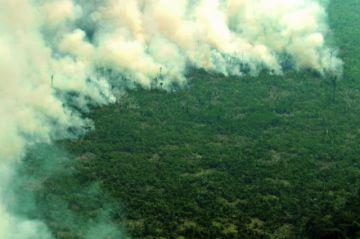 Fuego en la Amazonía arriesga acuerdo de la UE y el Mercosur
