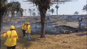 El humo golpea a bomberos en la Chiquitanía; cuatro ingresaron al hospital