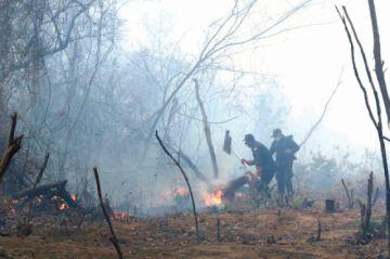 Gobierno descarta declarar emergencia; el calor podría aumentar incendios