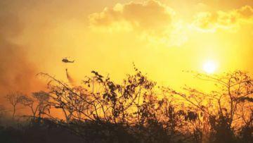 Focos de calor bajan  y Evo admite desastre