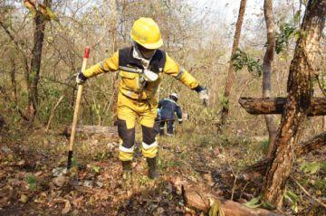 El fuego ya alcanzó 2,1  millones de hectáreas