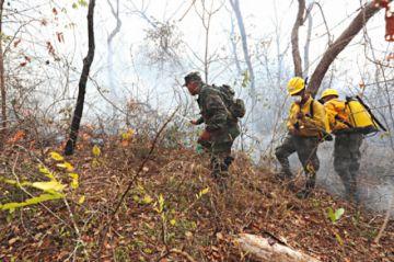 Soldados y voluntarios, los héroes que luchan contra el fuego en la Chiquitanía
